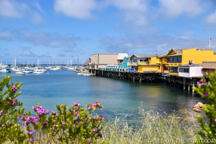 Monterey-16