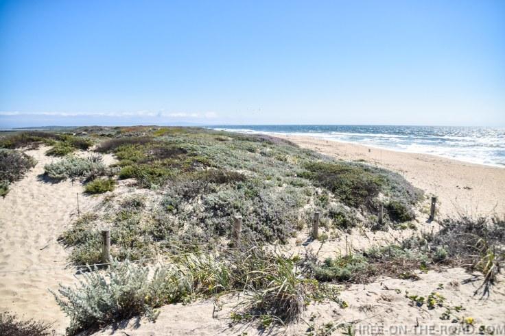 Monterey-19