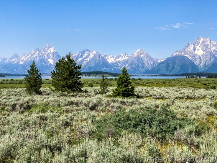 Yellowstone-GrandTeton-2