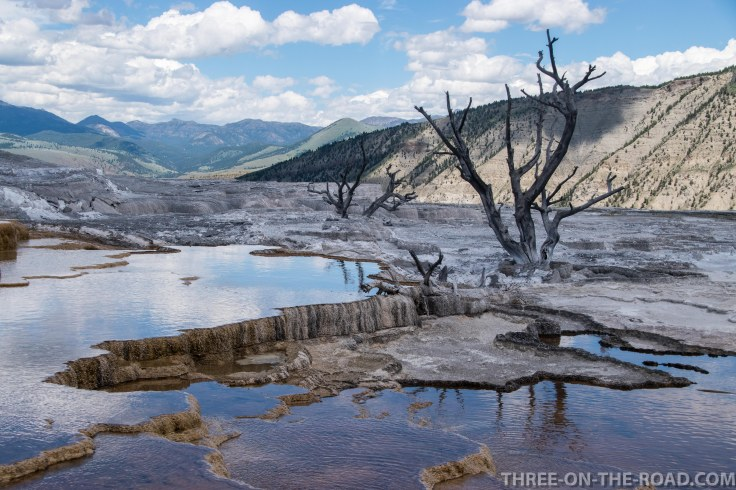Yellowstone-MammothTeraces-3
