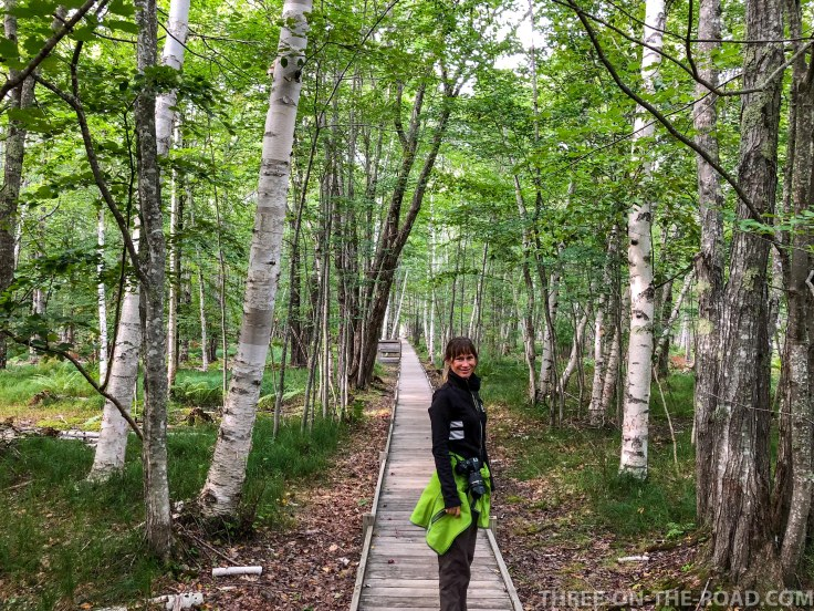 Acadia: Jesup Trail