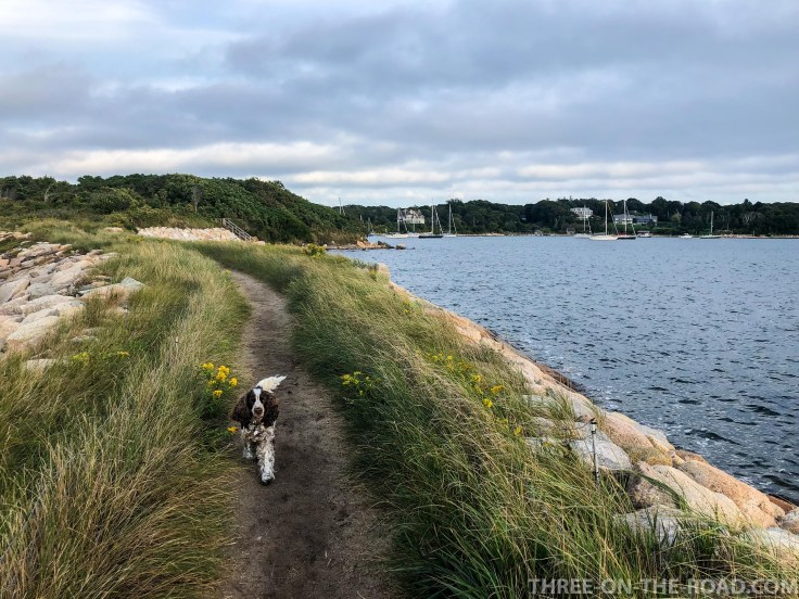 Knob Walk, Cape Cod