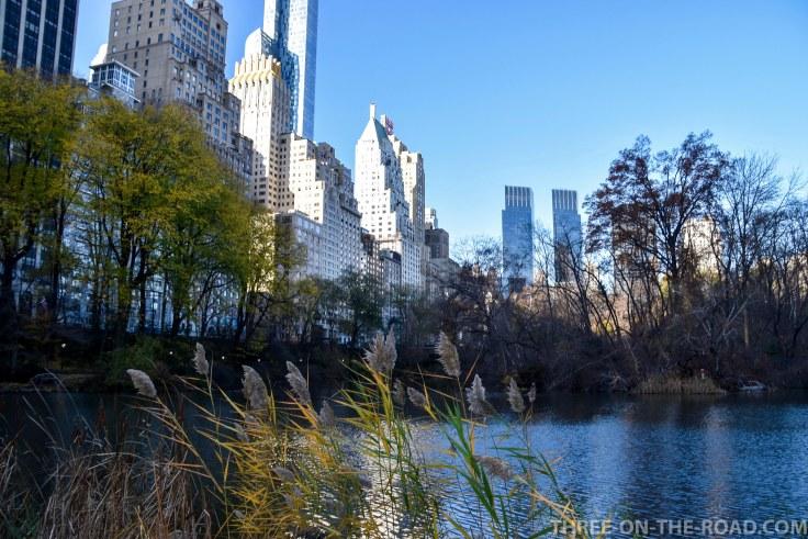 NYC_Flashback-22