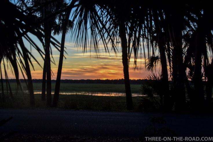 Myakka River S.P., FL